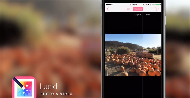 lucid app