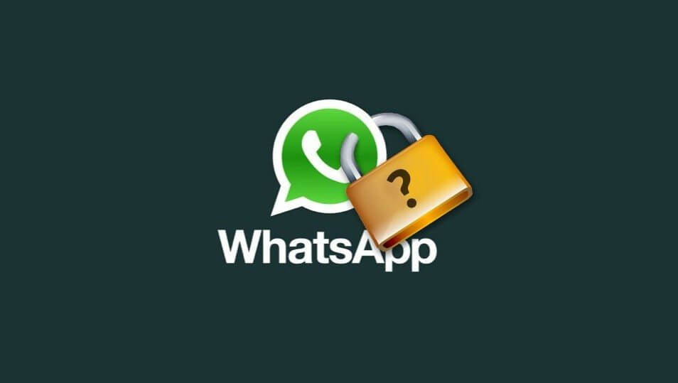 whatsapp seguranca e1459879421541