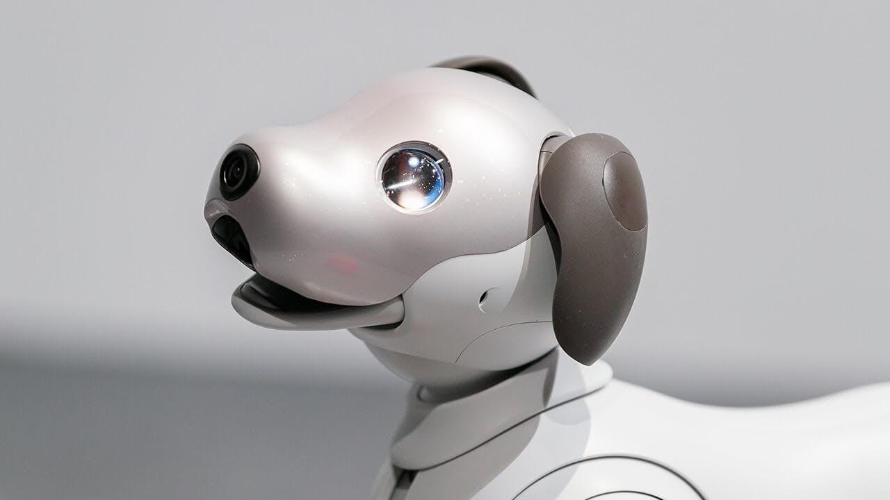 CES 2018: Aibo, o cão robô da Sony está prestes a ser lançado