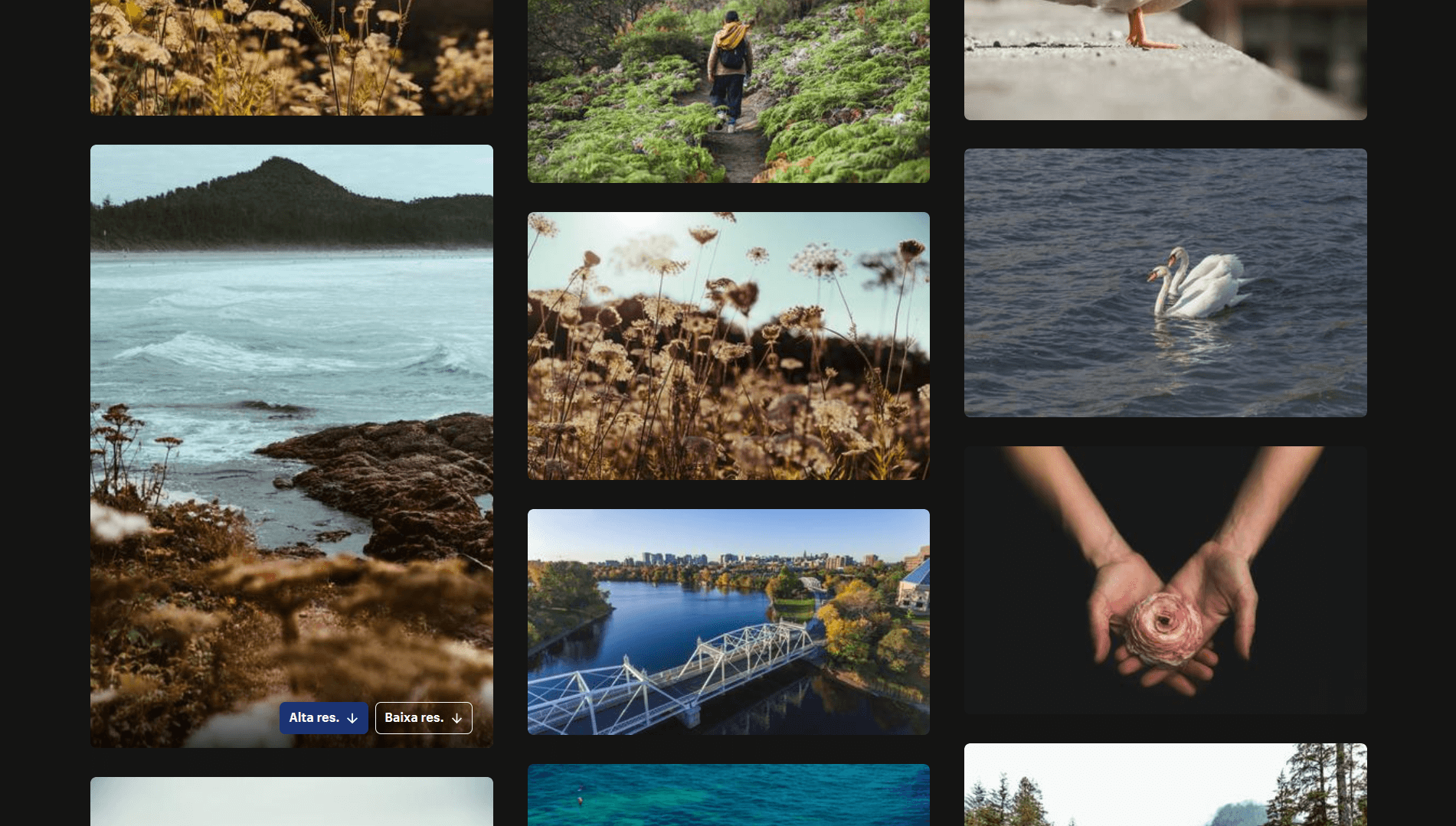 Conheça Burst, o banco de imagens gratuitas da Shopify que é totalmente localizado em português 7