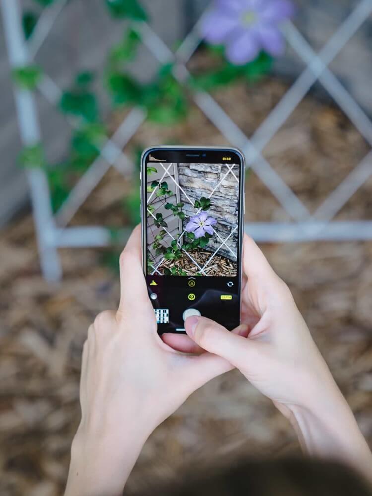 A compensação da exposição da imagem pode ser alterada pelo aplicativo.