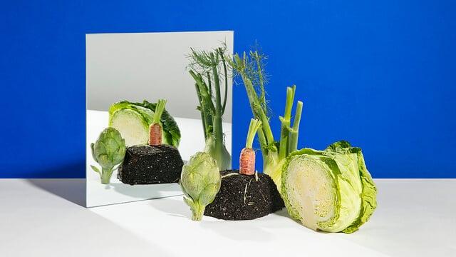 Este ano, as 5 inovações previstas pela IBM visam melhorar a segurança dos alimentos e diminuir o impacto ambiental negativo