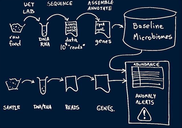 Ao analisar o mapeamento genético dos microorganismos, é possível saber se poderão infectar a comida