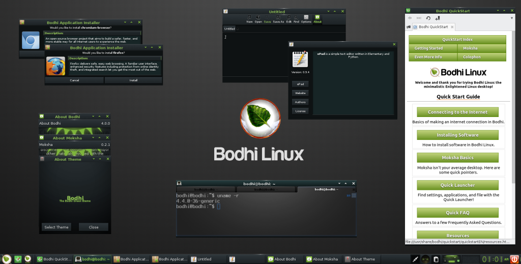 Bodhi linux leves