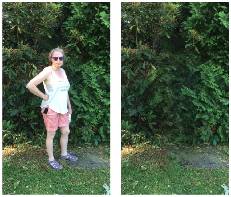 Bye Bye Camera: o app que remove pessoas das suas fotos através de Inteligência Artificial