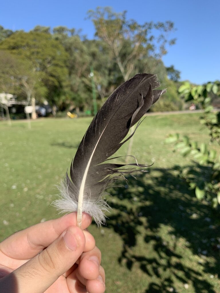 Fotografia 2 do iPhone XS