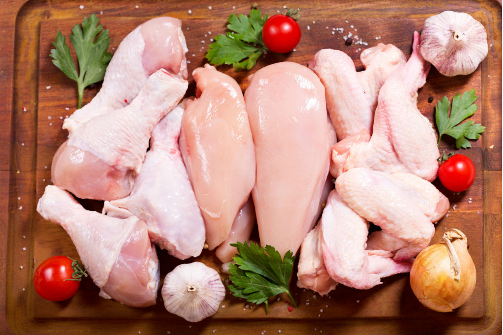 Aves precisam ser escolhidas com cuidado para serem consideradas carnes saudáveis