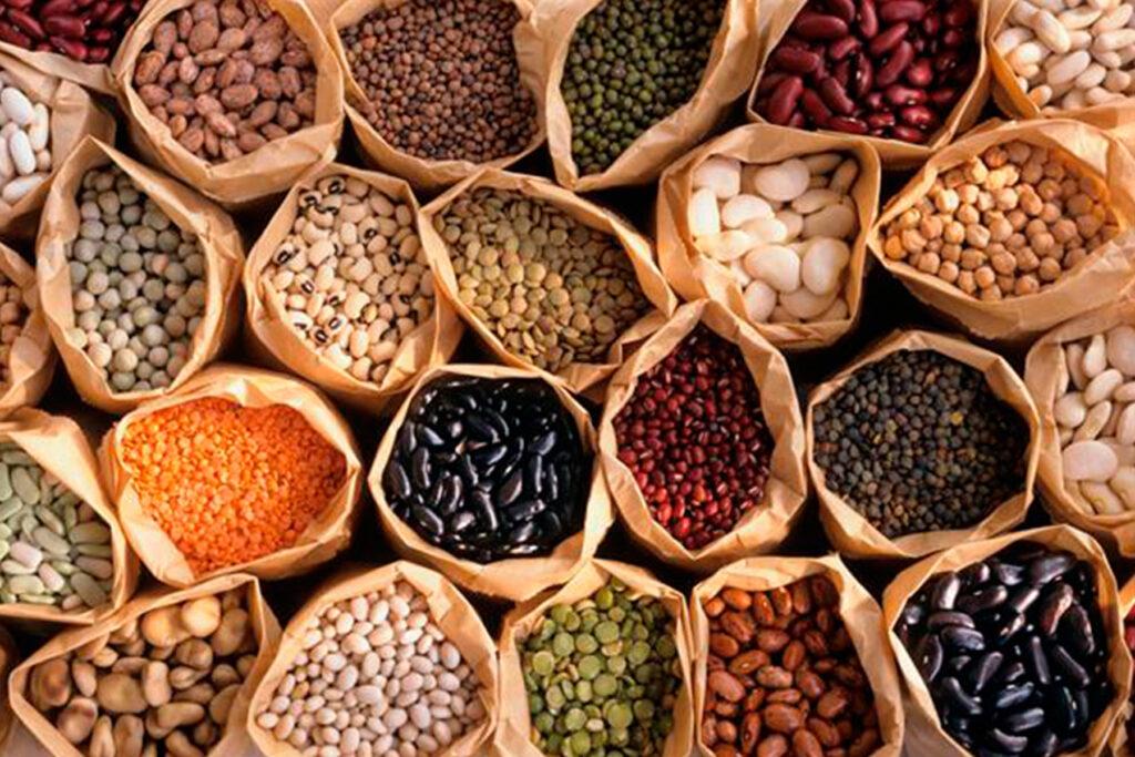 Leguminosas como feijão e outros grãos são ricos em proteínas