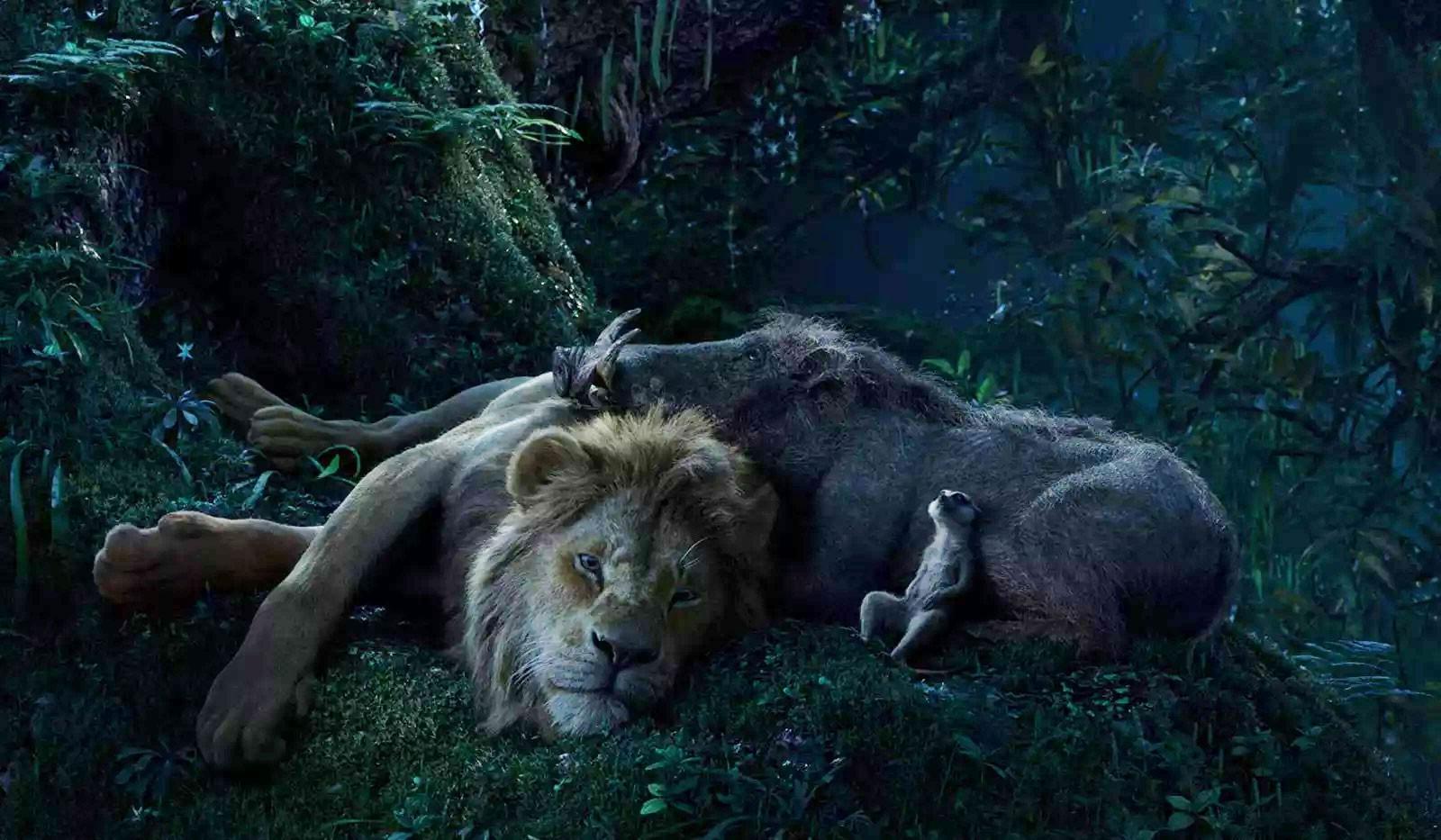 O rei leao simba pumba timao