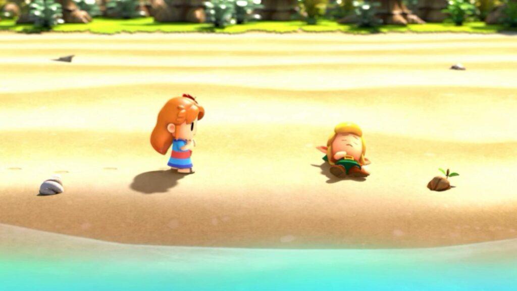 Marin encontra e resgata Link na praia, após o naufrágio de seu barco