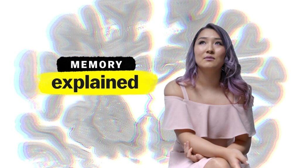 Explicando a Mente Netflix Memória