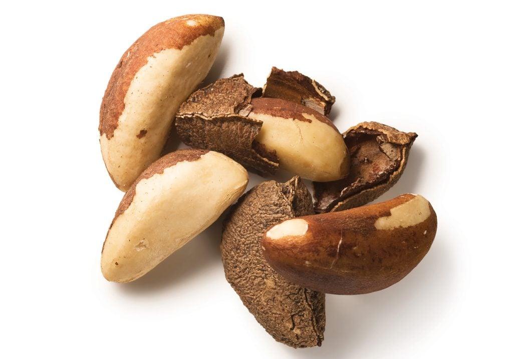 Castanhas do Pará contêm muito selênio e estão na lista de alimentos venenosos (Imagem: indiamart.com)