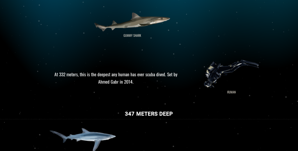 The deep sea site tour online oceano