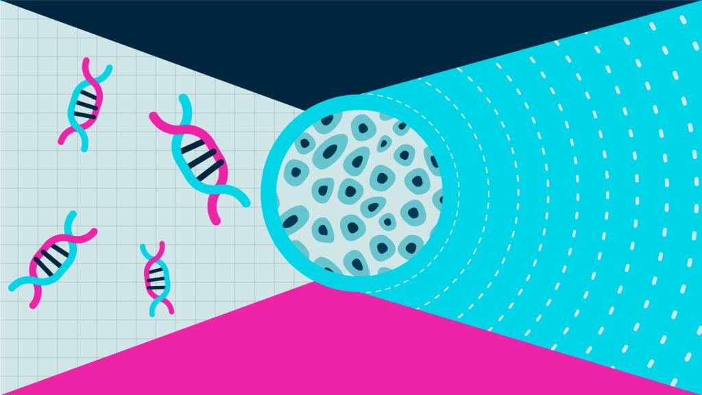 Se a pesquisa com as céluas-tronco para dor for bem-sucedida em humanos, pode ser um grande avanço no desenvolvimento de novas estratégias de tratamento da dor