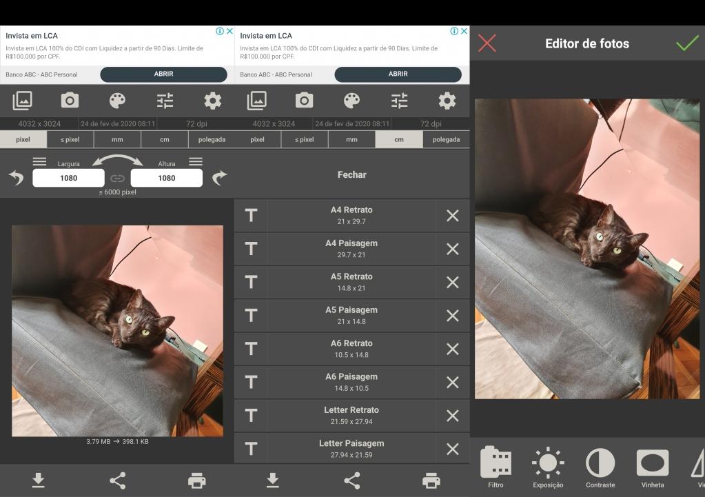 Telas do editor tamanho da imagem. Está sendo trabalhada a foto de um gato deitado em uma poltrona.