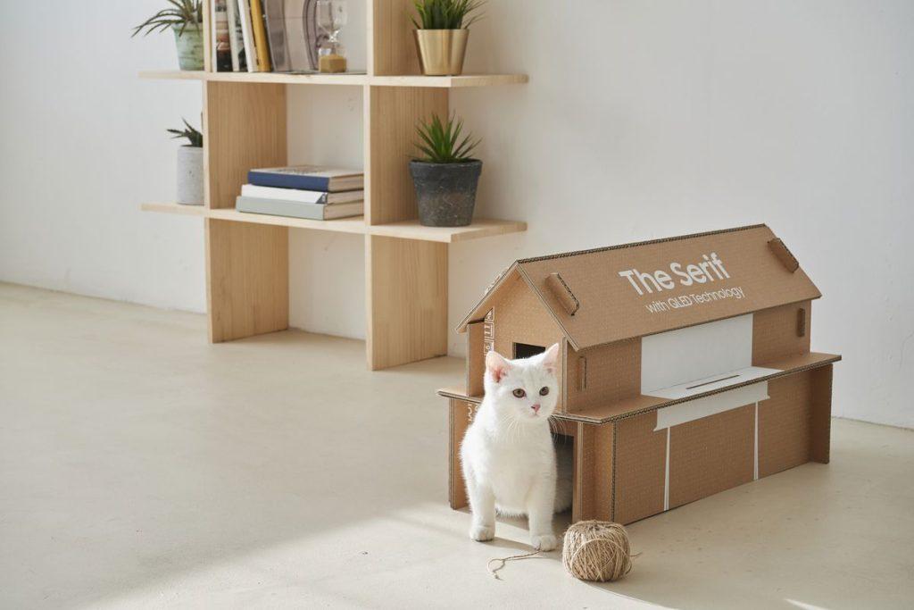 Gato branco saindo de dentro da casa feita com a caixa de TV Samsung Serif. Próximo a ele, um novelo.
