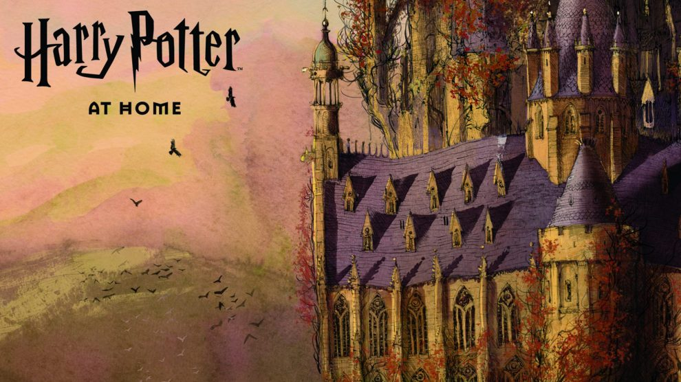 harry potter at home 2