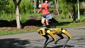 Spot boston dynamics singapura