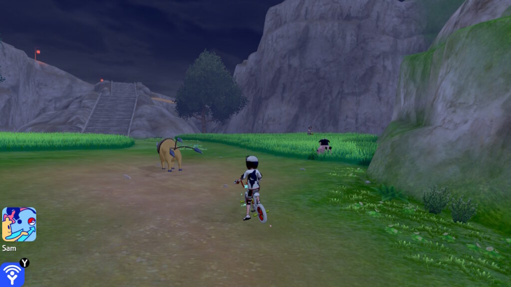 Um campo com Taurus e Miltank selvagens e, em segundo plano, uma escadaria para uma montanha.