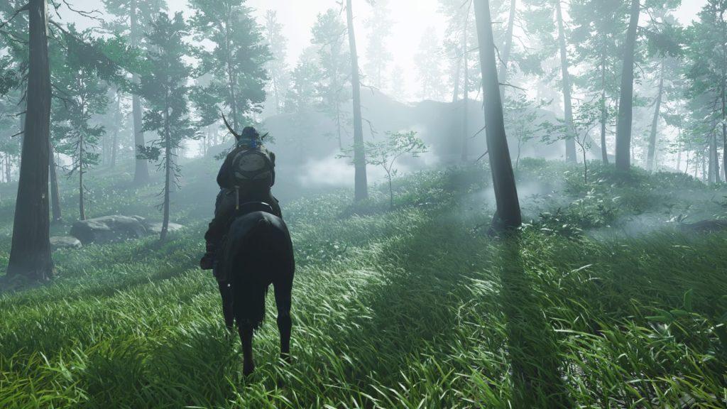Jin, em seu cavalo, observa a neblina da floresta.