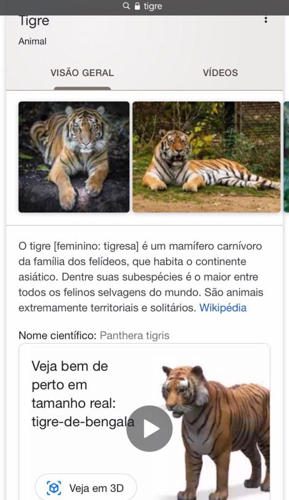 Veja animais 3d com o google