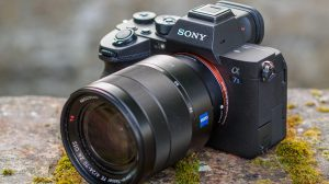 Sony alpha a7s iii 03 (foto: andy westlake/amaterur photographer)