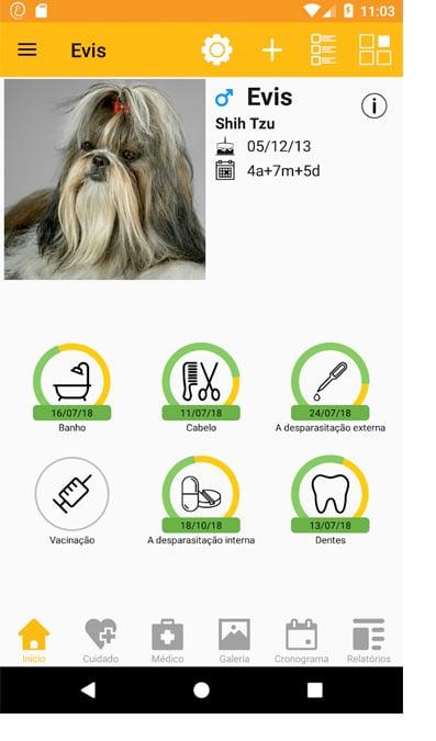 Captura de tela do aplicativo 11 pets: cuidado animal.