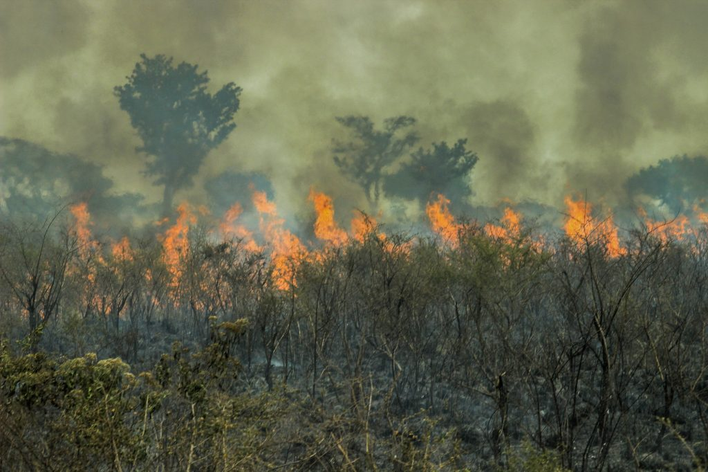 As queimadas aumentam a quantidade de co2 na atmosfera, intensificando o efeito estufa e impedindo a redução das temperaturas durante a noite e madrugada