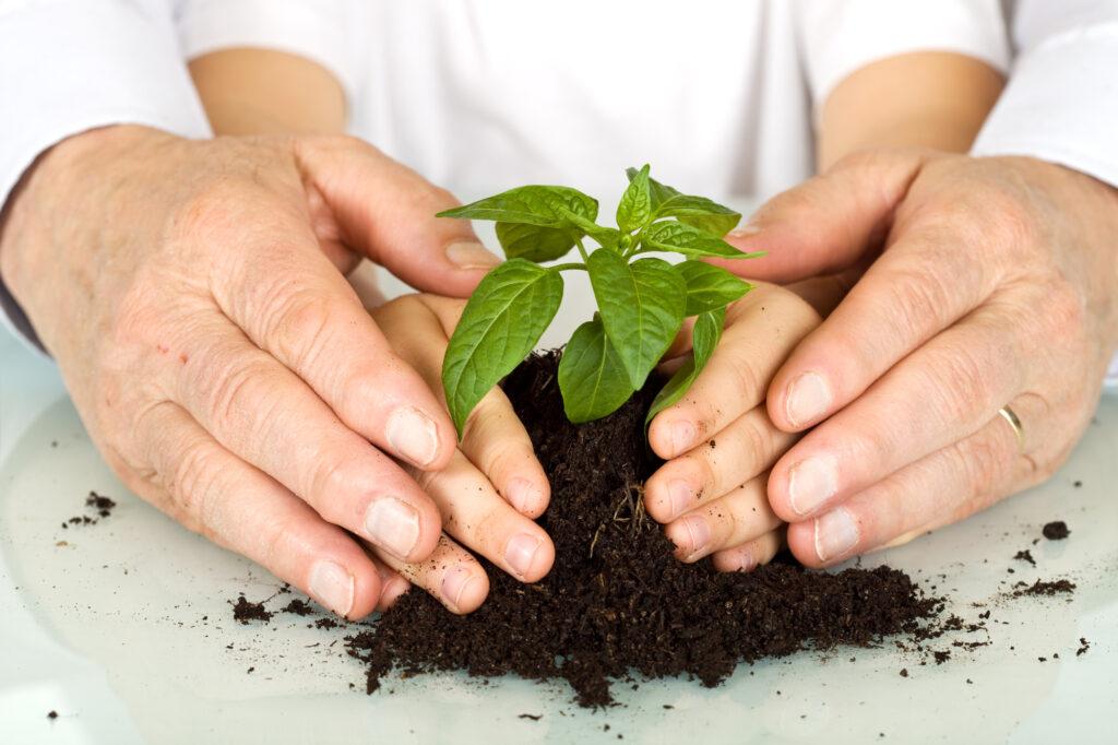 Educação ambiental é um passo importante para ajudar a reverter o cenário de mudanças climáticas extremas