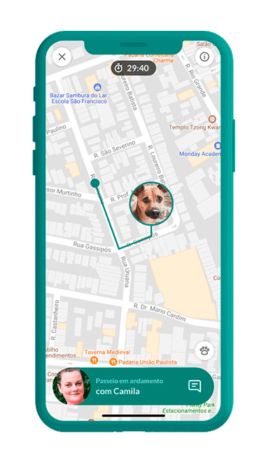 Captura de tela do aplicativo dog hero. Ocupando quase toda a tela, um mapa, com a foto de um cachorro quase ao centro. Dela parte uma linha que traça uma rota.