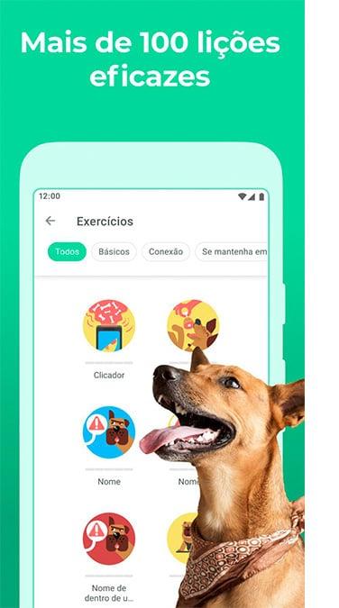 Aplicativos para cuidar de cachorros. Aplicativo dogo sobre fundo verde.