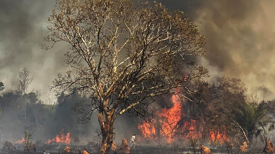 As queimadas aumentam a quantidade de co2 na atmosfera, intensificando o efeito estufa e impedindo a queda da temperatura durante a noite