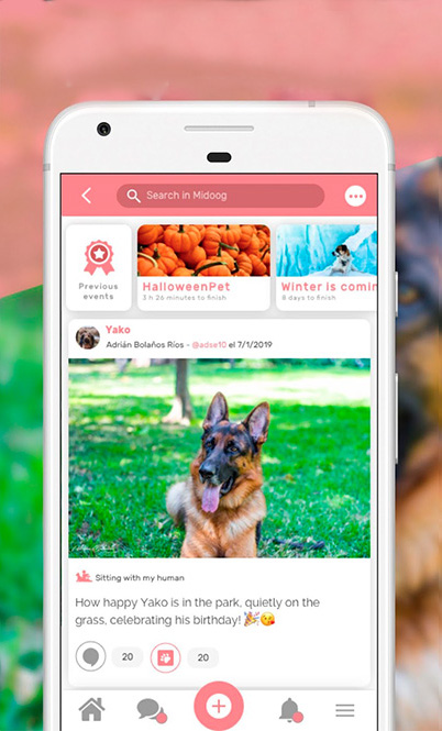 Captura de tela do aplicativo midoog