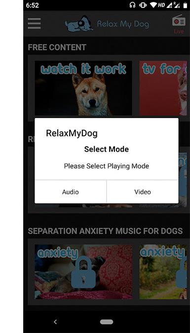 Captura de tela do aplicativo relax my dog