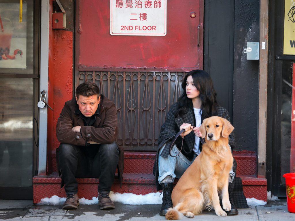 Sortudo, cachorro de hawkeye, estará presente na série.