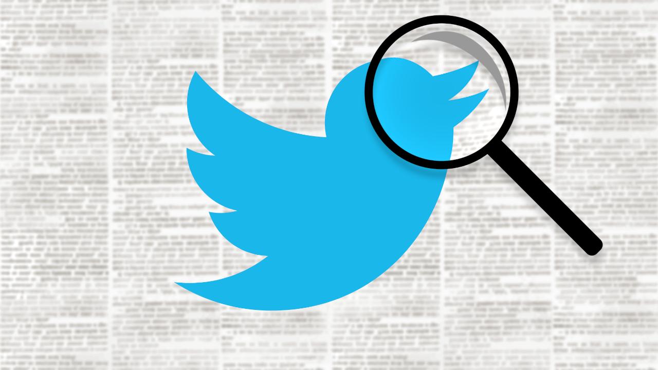 Birdwatch combate a desinformação no twitter