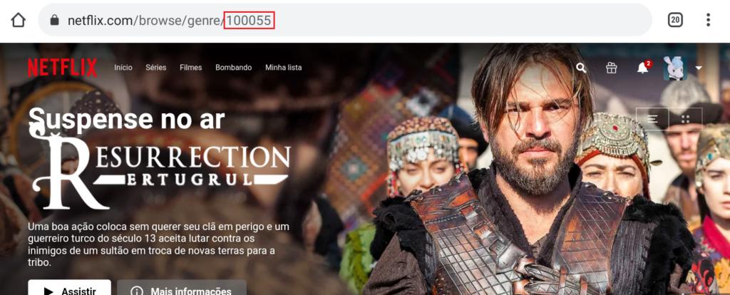 Página com url indicando o número 100055 - códigos secretos da netflix