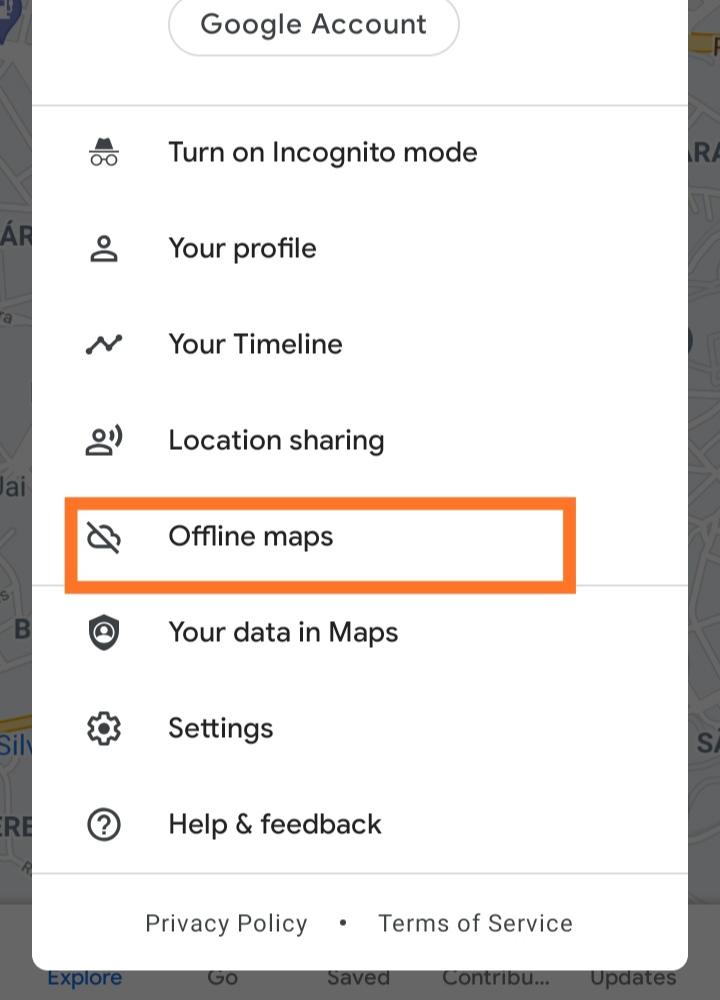 Limpar google maps