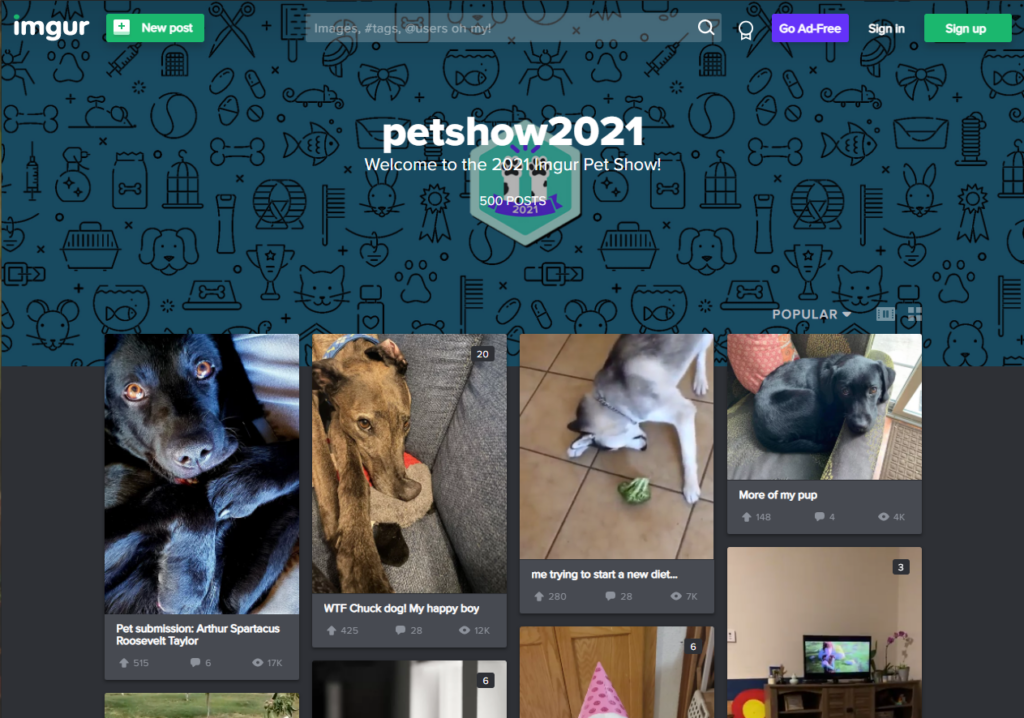 Os 16 melhores sites e apps para compartilhar arquivos e fotos