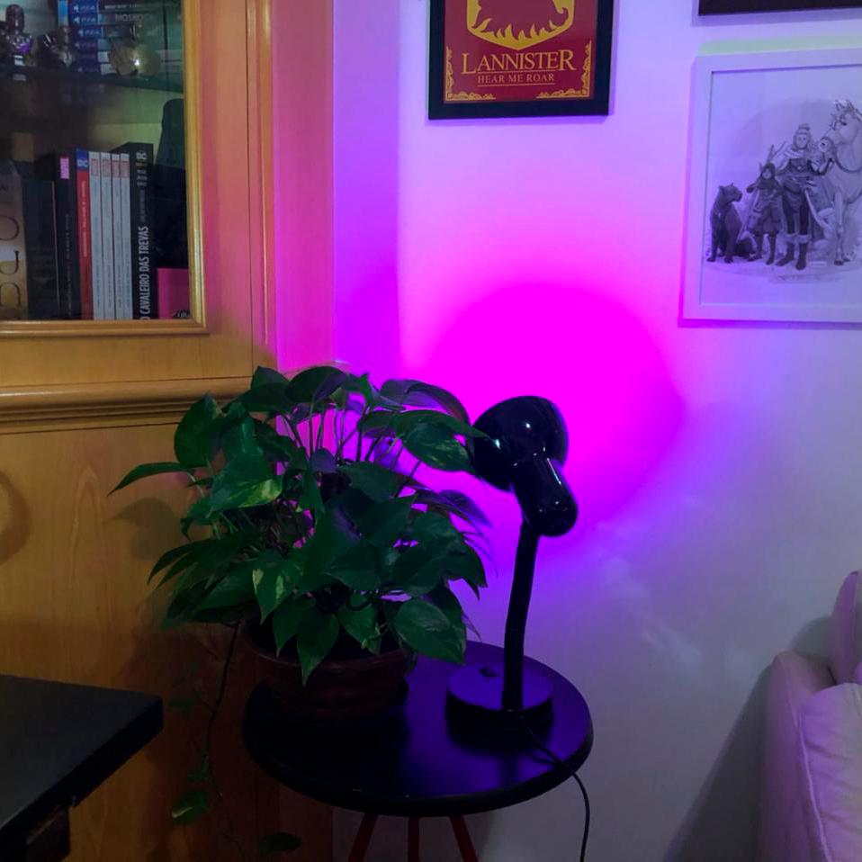 Testando com luz rosa na parede