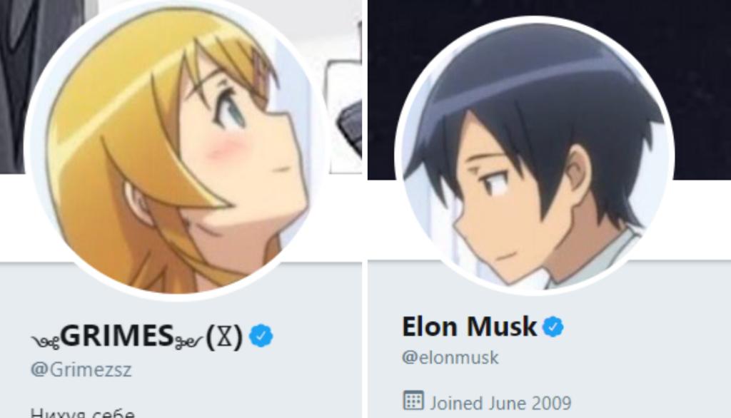 Elon musk e grimes anime