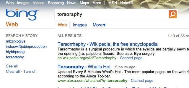 torsoraphy-bing