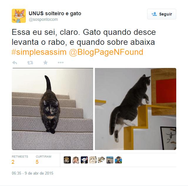 Dilema-do-gato-biologia