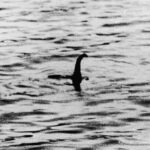 smt-Nessie-Real-Photos