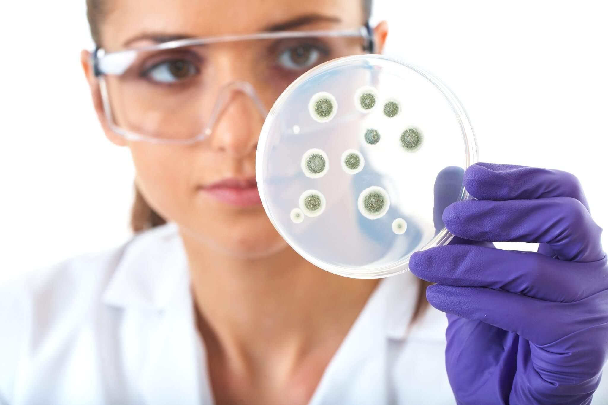 smt bandage capa - Cientistas criam bandagem que pode revolucionar o combate à bactérias