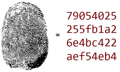 Hash - Saiba como nossas senhas são protegidas de criminosos virtuais