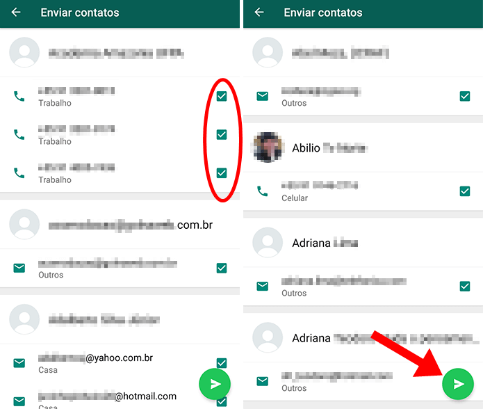 whatsapp contatos