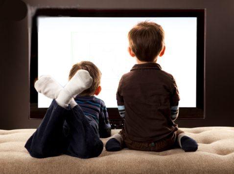 A televisão influencia sua opinião política? 6