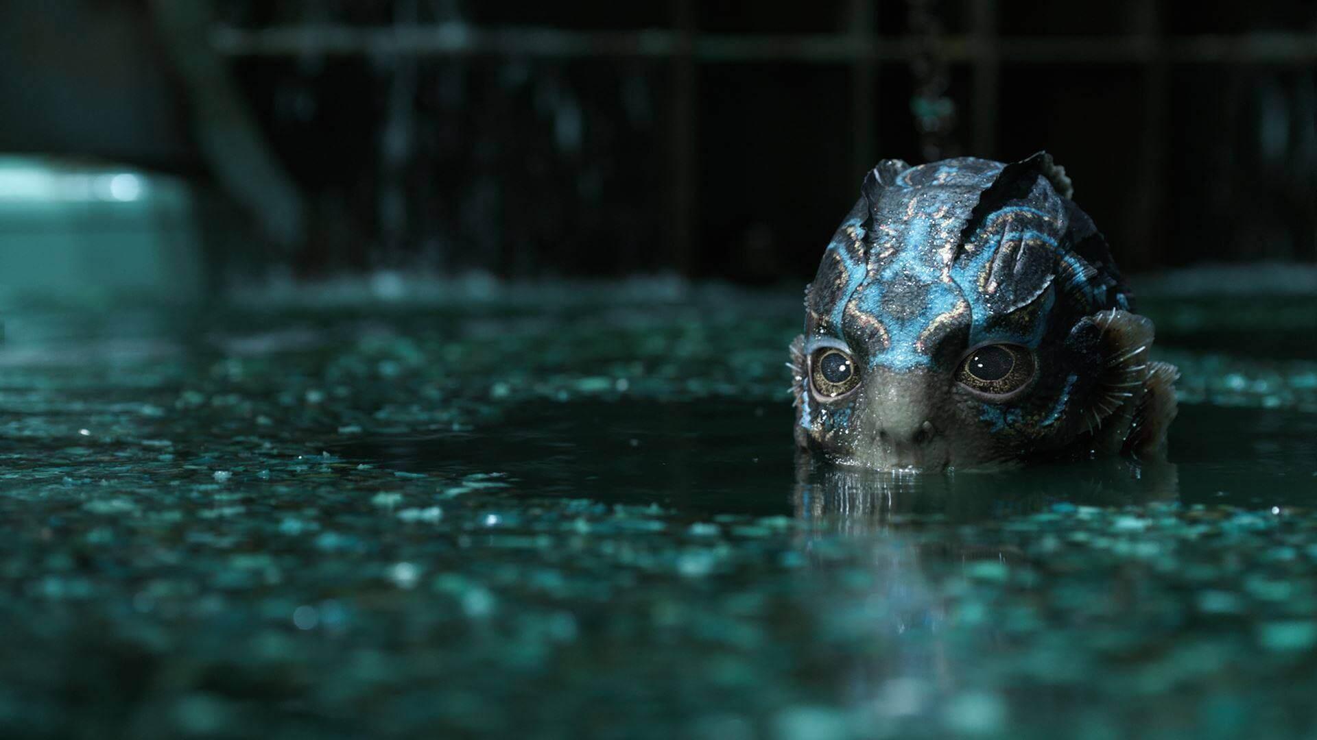 A Forma da Água - Prepare seu bolão: confira as melhores apostas para o Oscar 2018